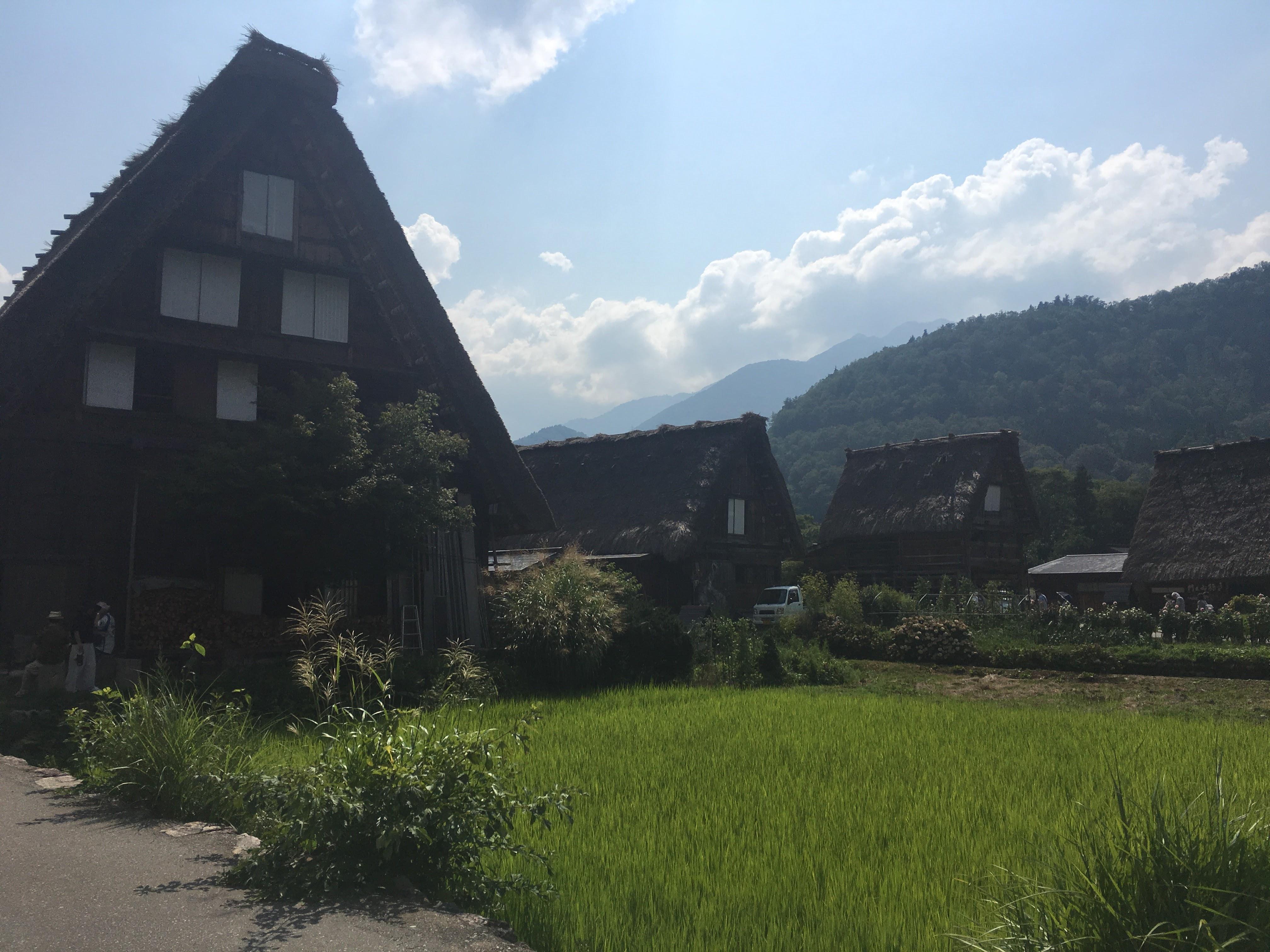 世界文化遺産の白川郷に行ってきました。