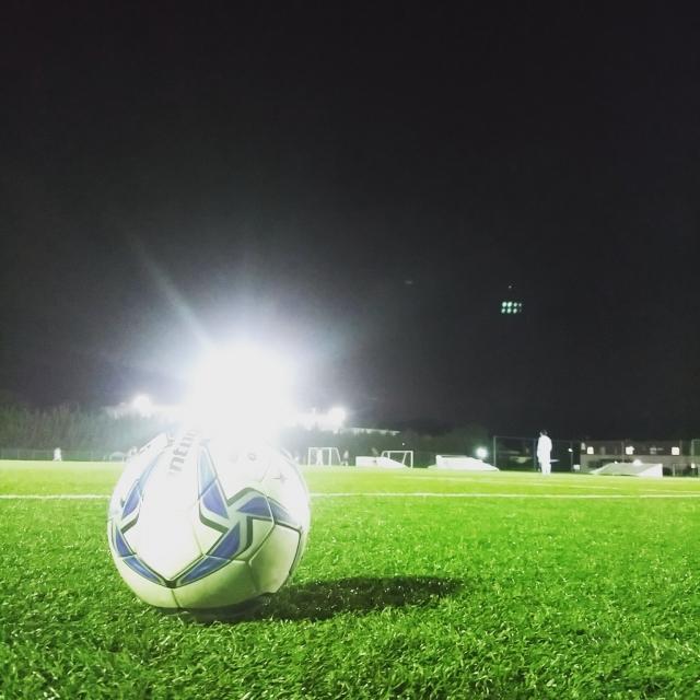 小柳ルミ子さんのサッカー解説に学ぶ副業の極意